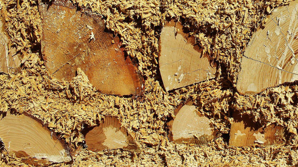 Hempcrete and Wood