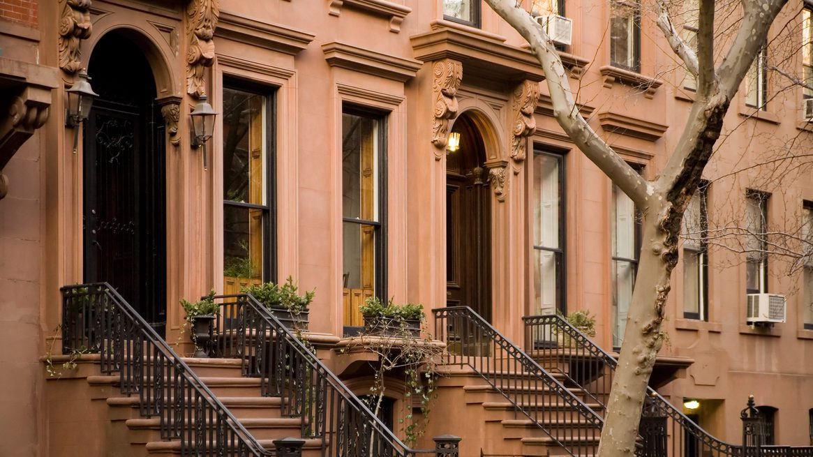 Brooklyn brownstones with lone tree
