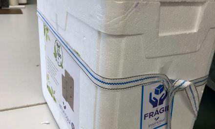 Mais de 700 doses de vacinas contra gripe são inutilizadas em Porto Alegre