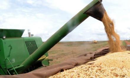 Exportações do Agronegócio Gaúcho cresceram em 2018
