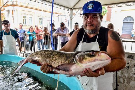 Inscrições para Feira do Peixe 2020 serão no dia 5 de março