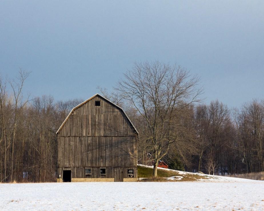 Four Mile Barn-2488