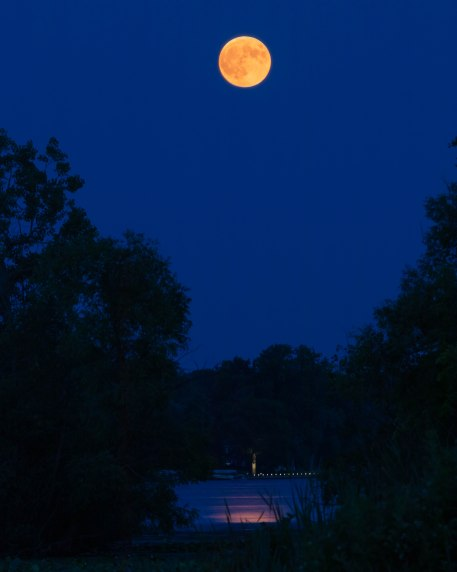 Blood Moon over Reeds Lake