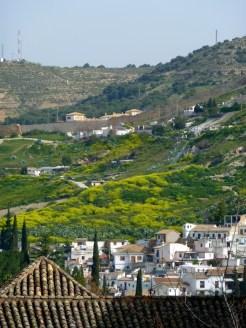 Alhambra74