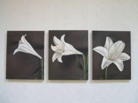 Lilies (29x36cm, 30x36.5cm, 29x36cm)