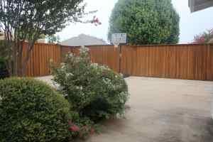 Backyard at OG Plano sober living