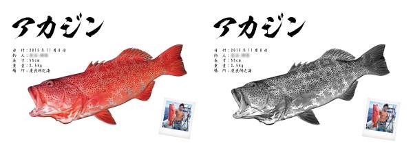 デジタル魚拓比較