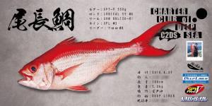 尾長鯛デジタル魚拓