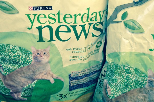 recycled kitty litter is the base of the mushroom-growing kit