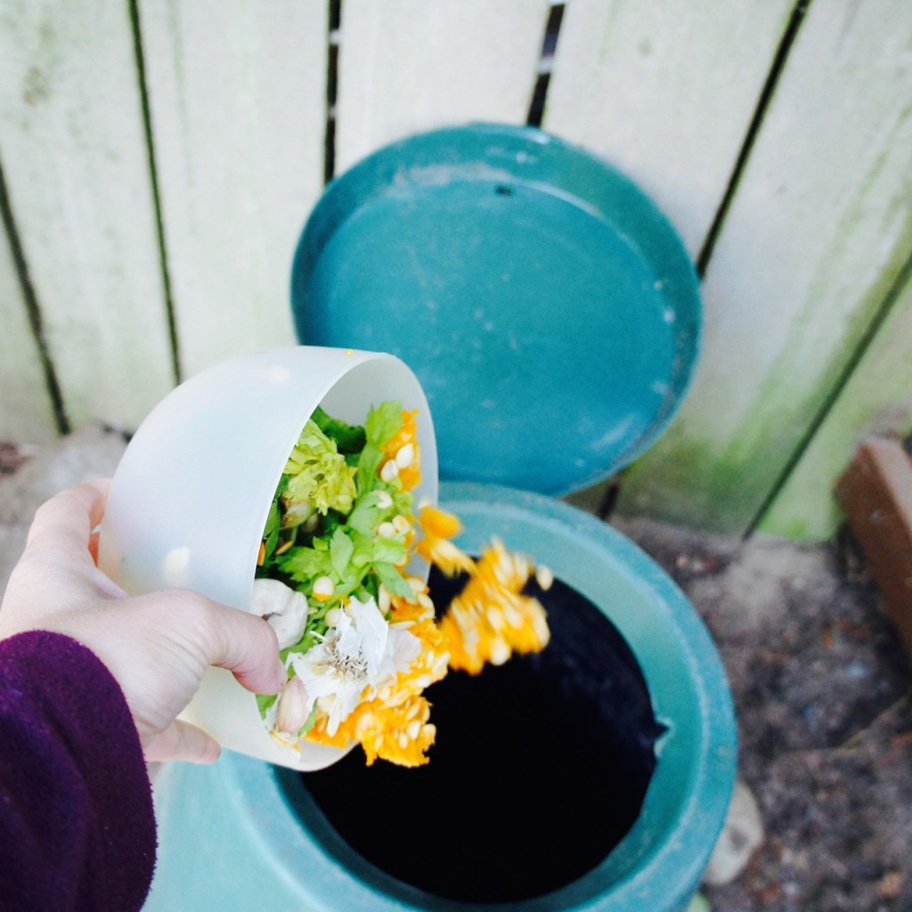 green cone composter