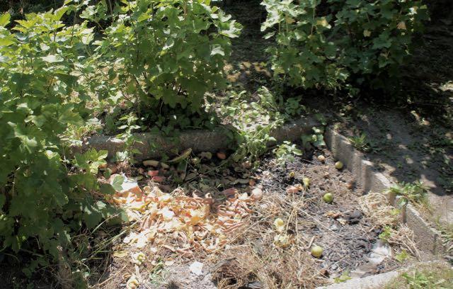 compost pit at Balaton