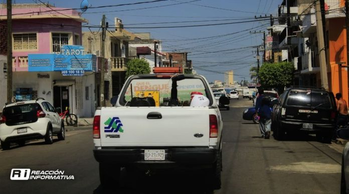 North of Mazatlán the preferred point of attack for the dengue mosquito
