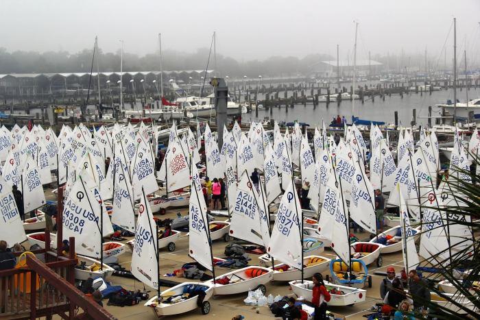 sailing, fleet, boats