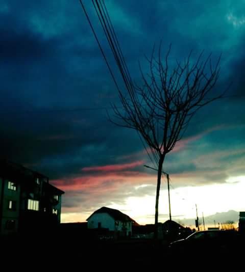 Ciba 001 Roxana Roxi bleu marin on the sky