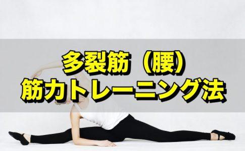 多裂筋筋力トレーニング