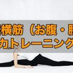 【筋トレ】猫背・腰痛を治したいなら腹筋から!腹横筋の筋トレ方法!!