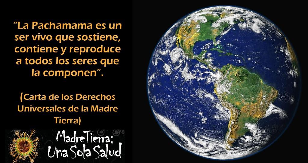 Sanar a la Madre Tierra para garantizar la continuidad de la vida