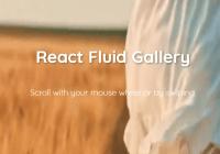 Fluid Media Gallery For React