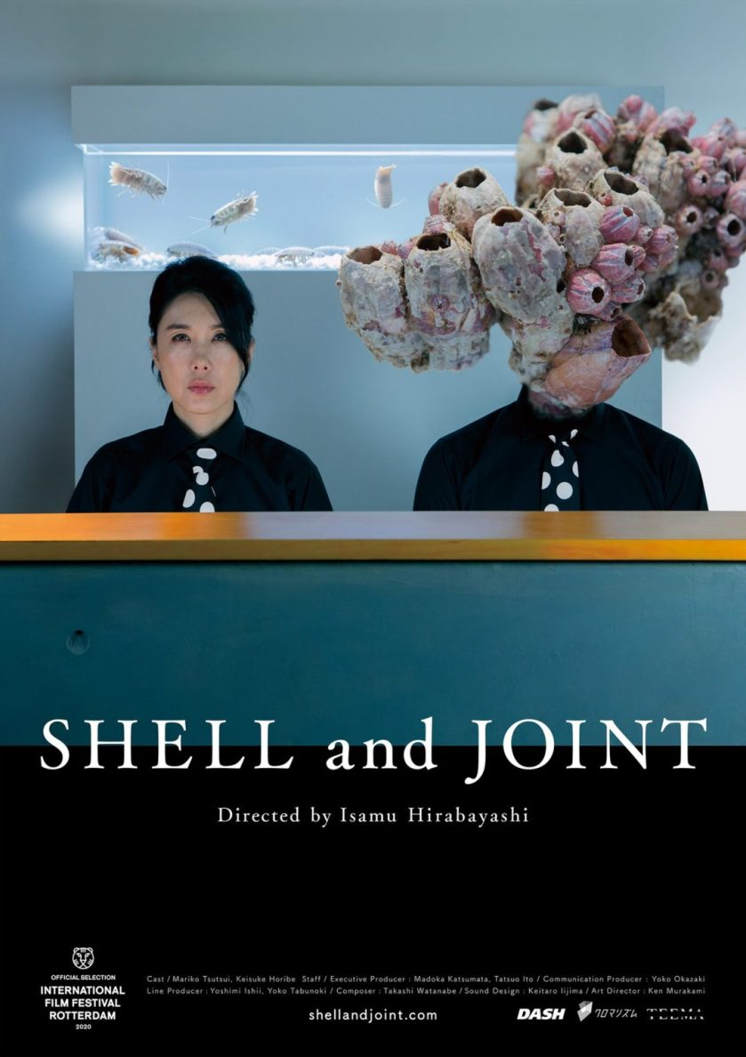 2019 Shell and Joint Poster