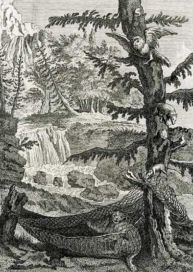 Jean de La Fontaine Fables - Book 8 - Fable 22