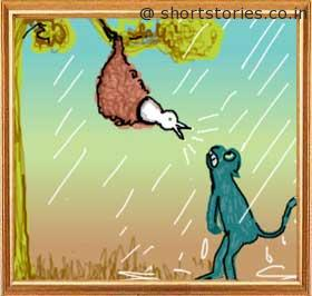 sparrow-come-to-grief-panchatantra-tales-shortstoriescoin-image