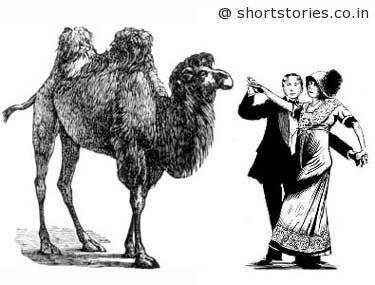 CamelsBackImage-shortstoriescoin