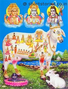 kamdhenu-cow-second-item-from-samundra-manthan