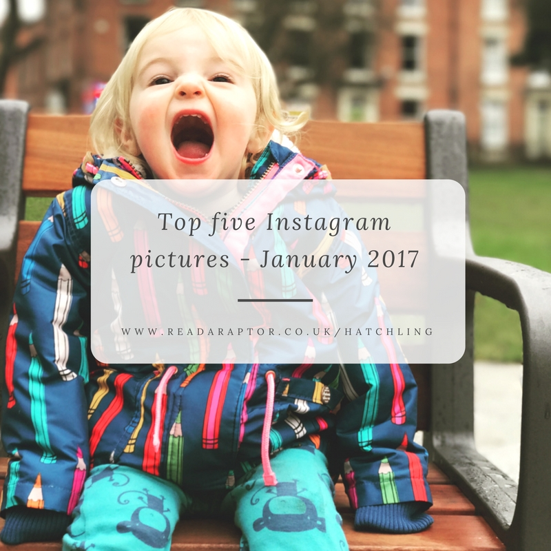 My top 5 Instagram pictures – January 2017