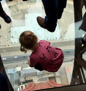 Blackpool-tower-view-from-the-top-readaraptor-hatchling-looking-down