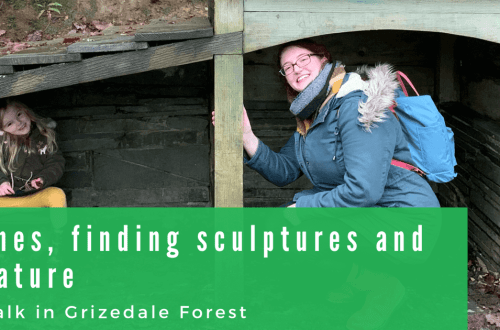 A fun filled walk with children in Grizedale Forest