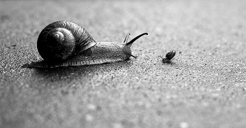 Image by superhoop via Flickr