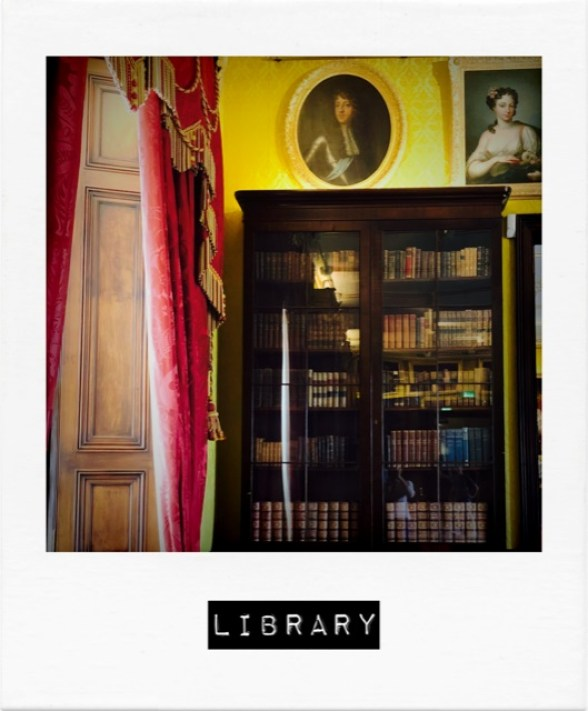 irland_library