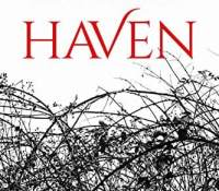 Blog Tour – Haven by Mary Lindsey – {Review}