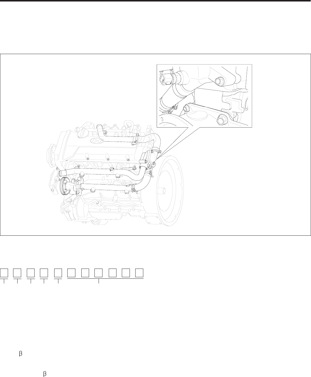 Hyundai Accent Leak Detection Pump Wiring Connectoir