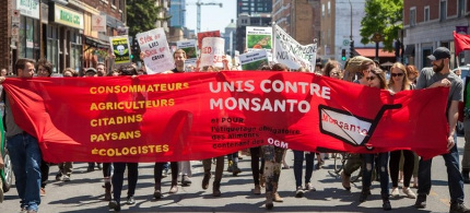 Protesters on the streets of Montreal in May, campaigning against genetically modified organisms and Monsanto. (photo: Cristian Mijea/Demotix/Corbis)