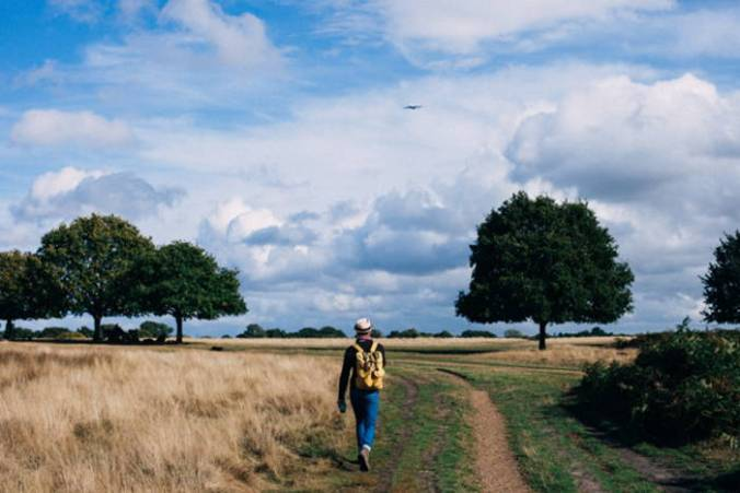 Single man with back to camera, wearing hat, hiking boots, and backpack, walks on a grass-grown dirt track through a flat field with trees on either side and large fluffy clouds in blue sky.