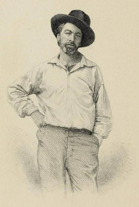 Engraving of Whitman's portrait from original Leaves of Grass edition shows a standing man with full beard wearing a working man's shirt open at the neck, a full-brimmed black hat perched sideways on a cocked head.