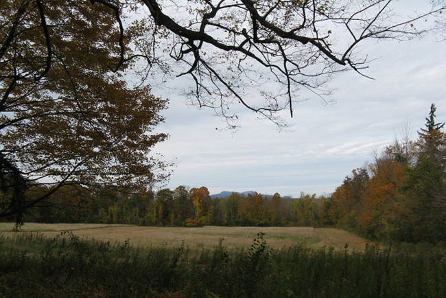 Mt. Greylock in the Berkshires--Melville's view as he wrote Moby-Dick.