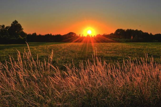 Sunrise over a crop of hay suggests splendor of creation and of Milton's poetry in Paradise Lost.