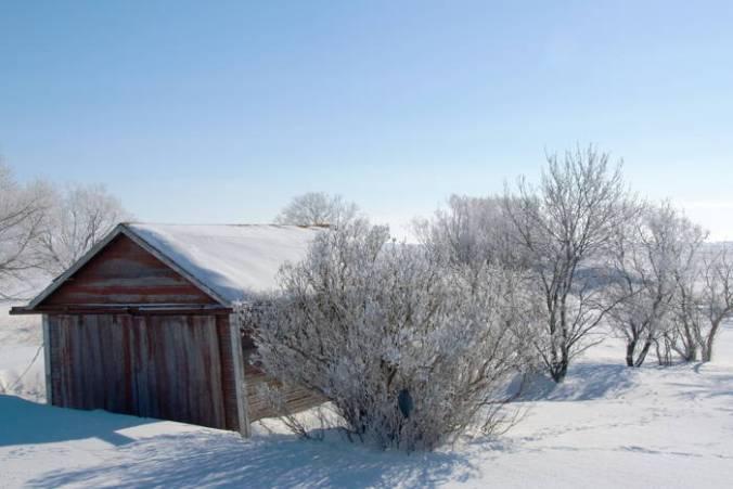 Cabin in Saskatchewan