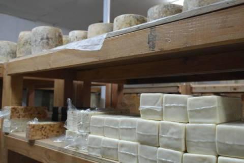 Bravo Farms Cheese Tasting Visalia 6