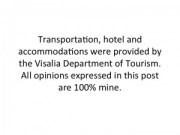 Visalia Trip Disclosure