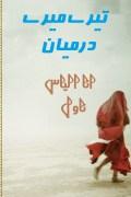 Teray Meray Darmiyan By Ana Ilyas Complete Novel