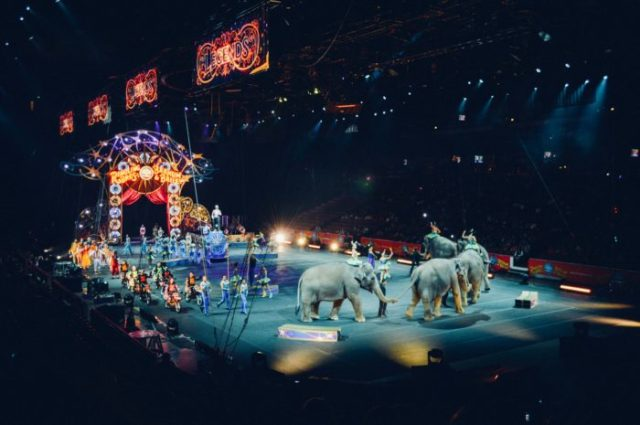 Circus, Carnival by Becky Phan