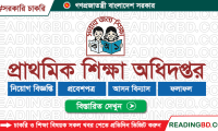 Directory of Primary Education Job Circular 2019