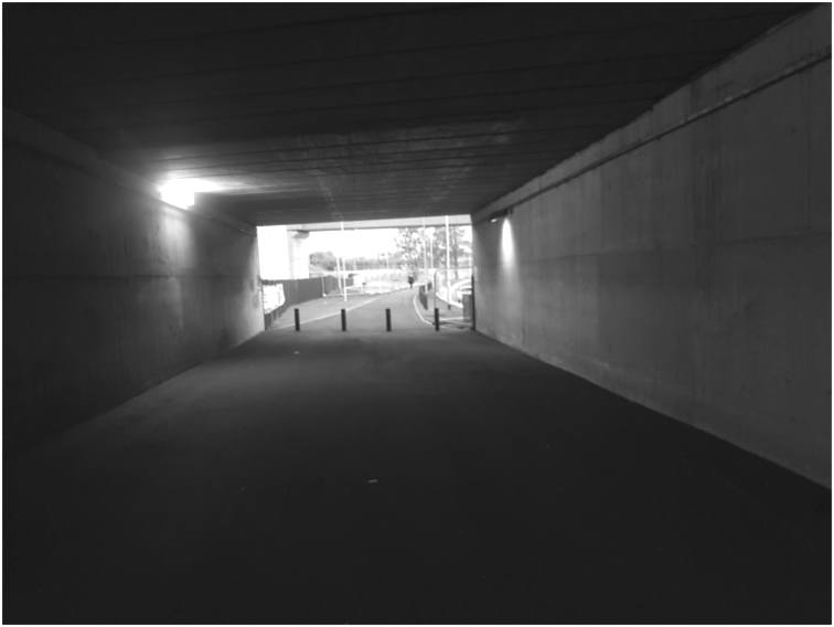 the space inside the shared use tunnel