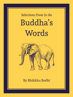Cover of Selections from In the Buddha's Words An Anthology of Discourses from the Pali Canon