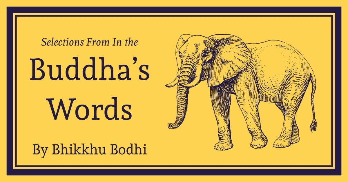 Selections from In the Buddha's Words: An Anthology of Discourses from the Pali Canon