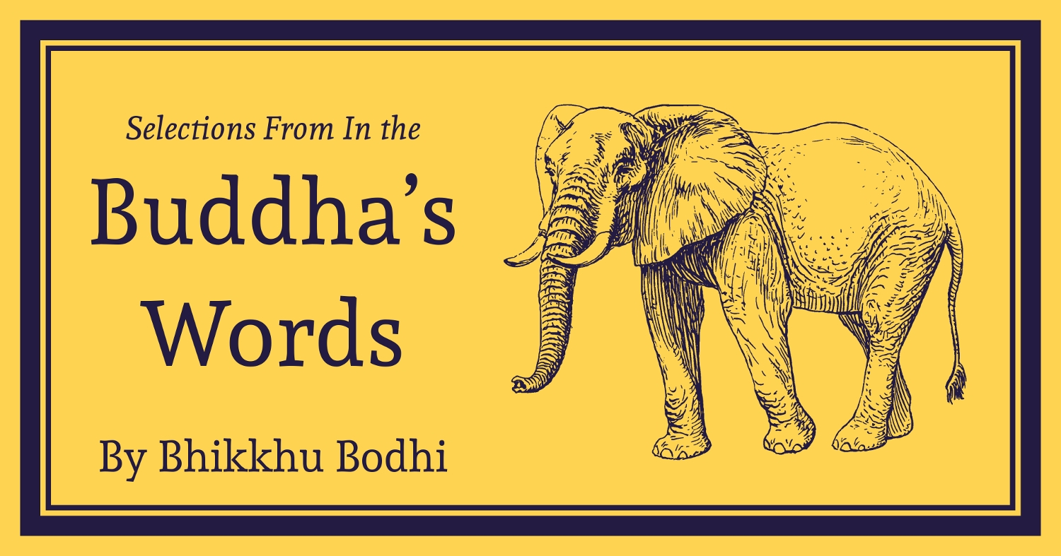 in the buddhas words an anthology of discourses from the pali canon the teachings of the buddha
