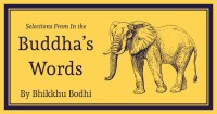 Feature cover of Selections from In the Buddha's Words An Anthology of Discourses from the Pali Canon